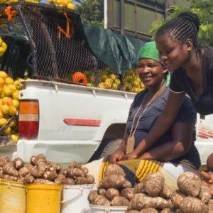 DLI Third Challenge Window to Focus on Economic Growth