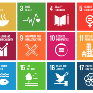 The Innovation Funds Supporting #data4SDGs