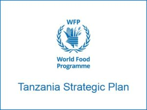 Tanzania Strategic Plan